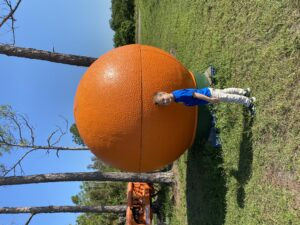 Big Orange at South Naples Citrus Grove