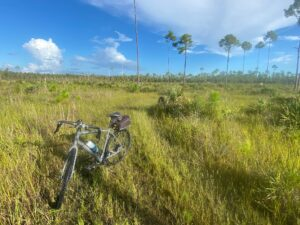 Bike Ride in Picayune State Forest